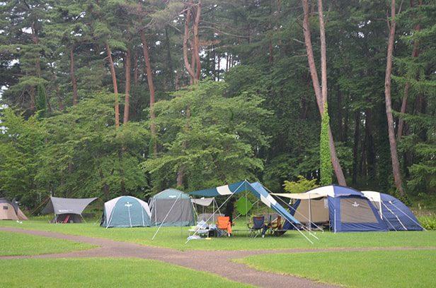大堤公園のテント