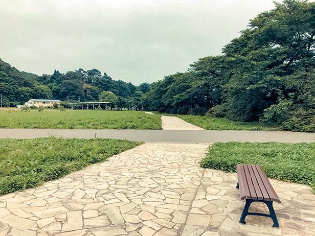 早朝の展勝地公園
